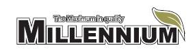 Логотип фирмы Меллениум